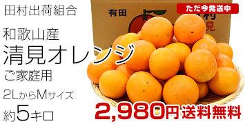 清見オレンジご家庭