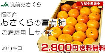 朝倉の富有柿Lサイズ 5キロ