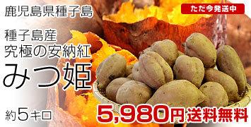 みつ姫5キロ