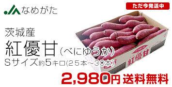 紅優甘S5キロ