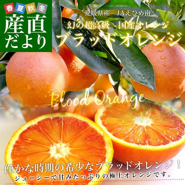 ブラッドオレンジ優2キロ