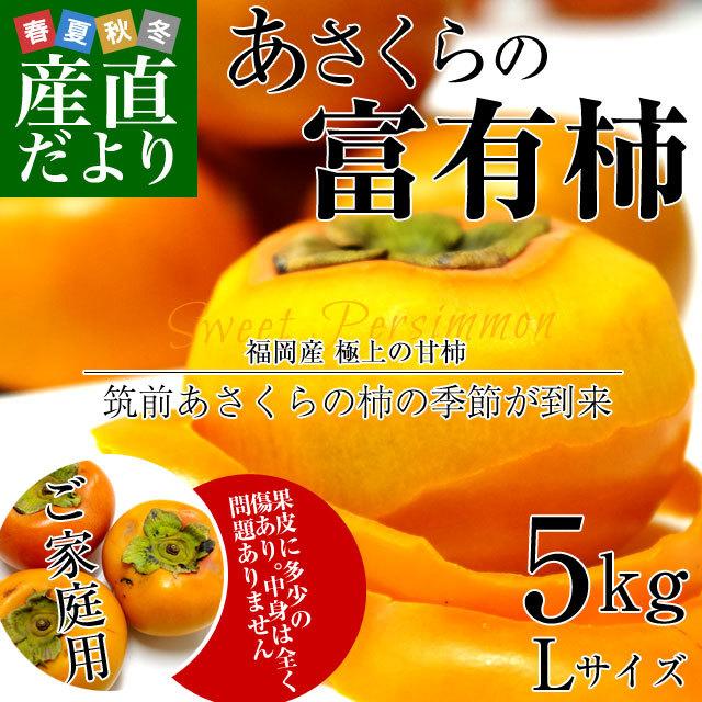 朝倉の富有柿