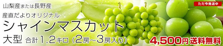山梨県または長野県産シャイン