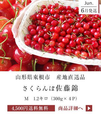 佐藤錦M 1.2キロ