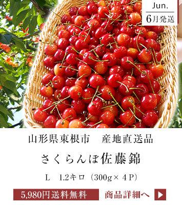 佐藤錦L 1.2キロ