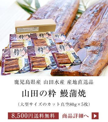 山田の粋5切