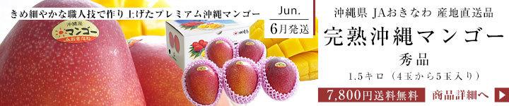 沖縄マンゴー 秀品1.5キロ