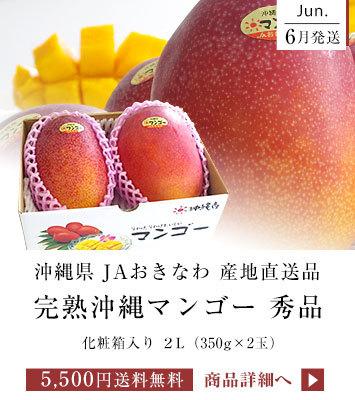沖縄マンゴー 2玉