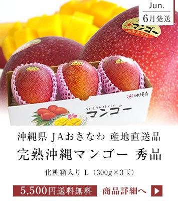 沖縄マンゴー 3玉