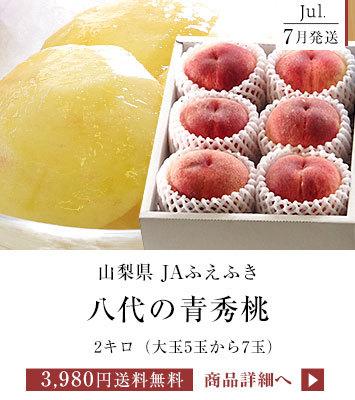 八代の桃2キロ