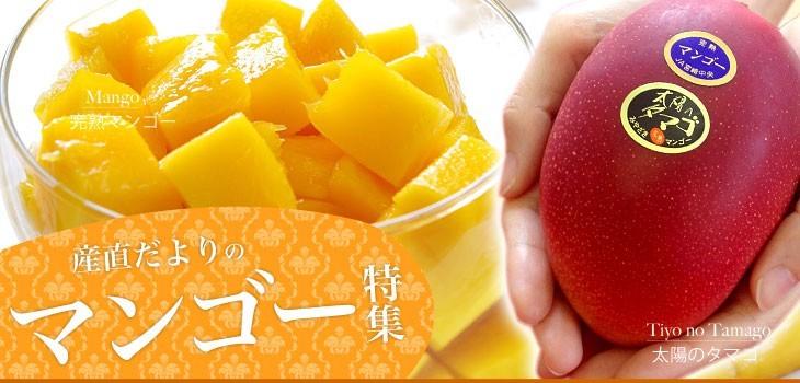 産直だよりのマンゴー特集