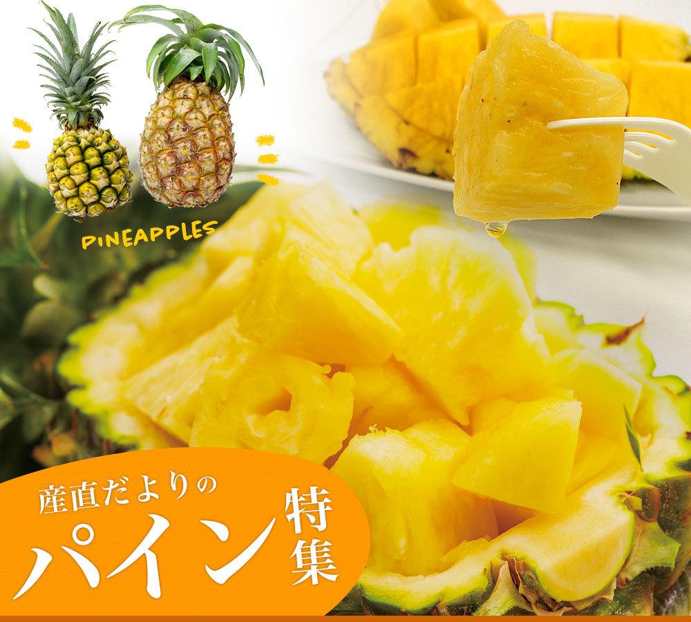パイナップルカテゴリー