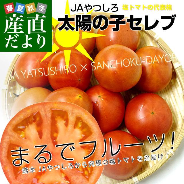 熊本県より産地直送 JAやつしろ 太陽の子セレブ フルーツトマト 約1キロ LからSサイズ(9玉から16玉) 送料無料 とまと - txrehabassoc.org