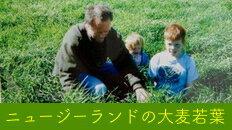 ニュージーランドの大麦若葉