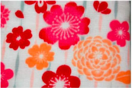 フェイスタオル2枚セット 夏のガーゼてぬぐい/ジャパニーズスタイル 日本製