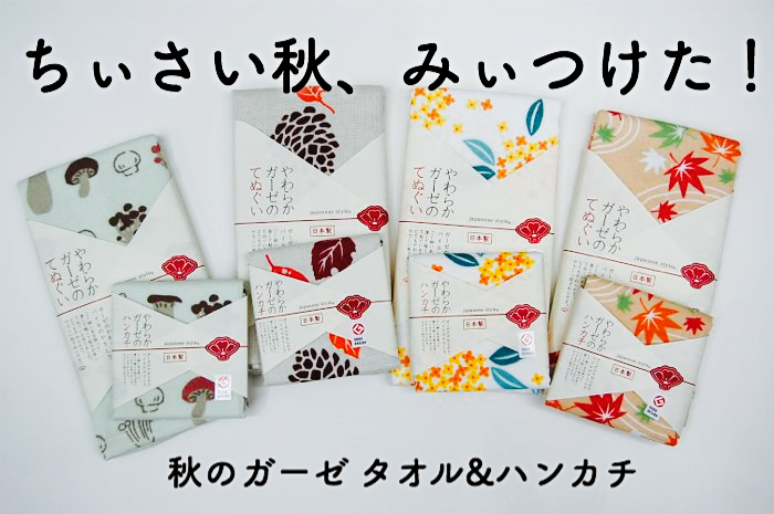 フェイスタオル/ハンカチ/日本製/泉州タオル/ガーゼ