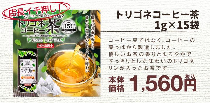 トリゴネコーヒー茶
