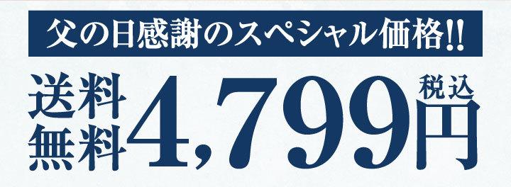 父の日感謝のスペシャル価格