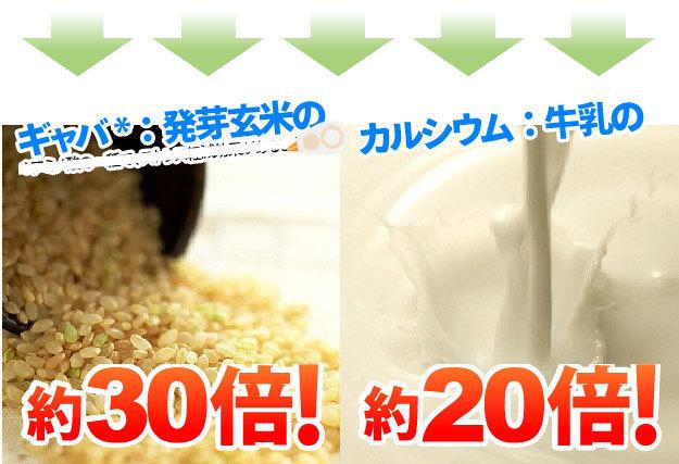 発芽玄米の約30倍のギャバ、牛乳の約20倍のカルシウム
