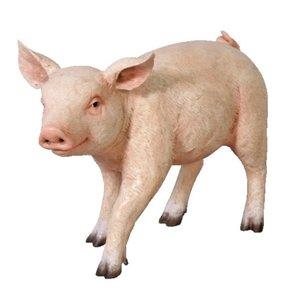 人気ブランドの FRP ChuBBy まるまるした子豚/ ChuBBy Piglet 『動物園オブジェ/ アニマルオブジェ 店舗・イベント向け』 送料無料 【FRP】まるまるした子豚。, シェシェア【xiexiea】:986e116f --- move-you.com
