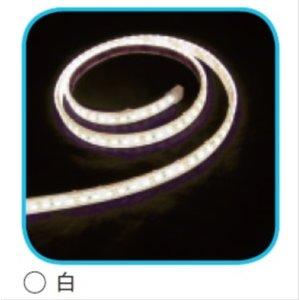 【メーカー再生品】 コロナ産業 LED装飾照明 LED装飾照明 リボンライト リボンライト *電気工事業者専用品 コロナ産業 RS120W LED色:白色 『イルミネーションライト』 送料無料 【コロナ産業】イルミネーションを楽しもう!, TOKYO ART FILE:4b1c8dd4 --- blog.buypower.ng