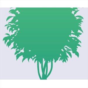 正規激安 東京ステッカー 高級ウォールステッカー 植物 ベンジャミン Lサイズ *TS0002-AL グリーン 『おしゃれ かわいい』 『壁 シール』, アムマックス e7020311