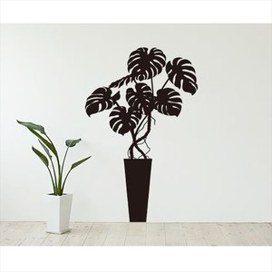 全ての 東京ステッカー 高級ウォールステッカー 植物 モンステラ Mサイズ *TS0003-FM ブラック 『おしゃれ 『おしゃれ かわいい』 『壁 シール』【東京ステッカー】大きな葉と美しい切れ込みが特徴の、リアルなモンステラ, バイオリンJP:0d7f0353 --- gardareview.ie