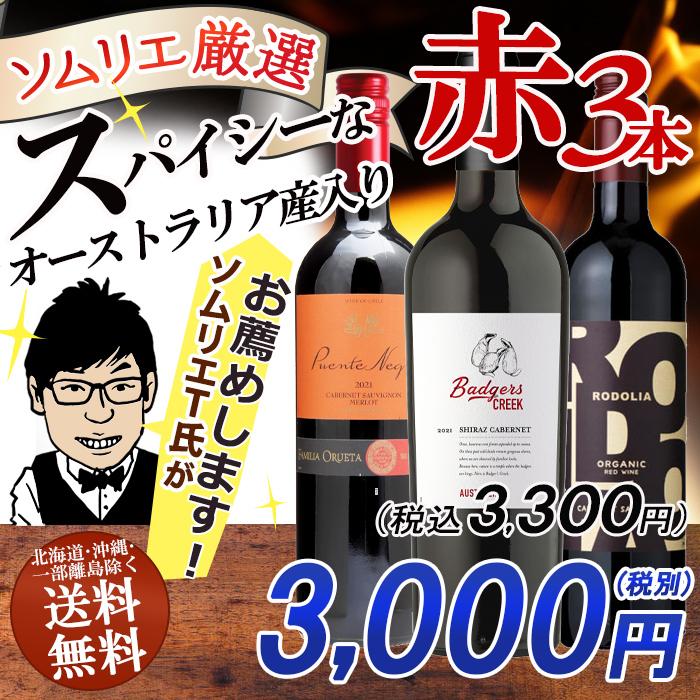 ワインソムリエおすすめ スパイシー 赤ワイン バラエティ3本セット