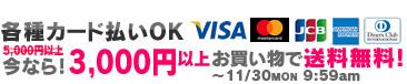 各種カード払いOK! 今なら3,000円以上お買い物で送料無料!11/30 9:59amまで!