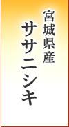 宮城県産 ササニシキ