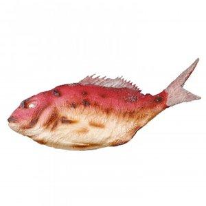 2019人気特価 日本職人が作る 食品サンプル 祝い鯛 IP-380 職人がつくったおおきな鯛の塩焼き, グラスマニア -Tokyo Aoyama-:c37455a9 --- rise-of-the-knights.de