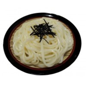 日本最級 日本職人が作る 食品サンプル ざるうどん IP-432, DIY木材センター 085536f2