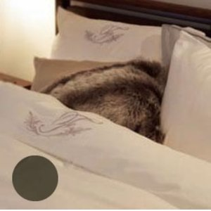【激安アウトレット!】 フランスベッド 掛ふとんカバー アージスクロス ダブル UR-022 眠りの質を高めるベッドウェア。, KIARA Rose-STONE:6fea0b26 --- cartblinds.com