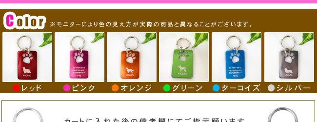 レッド・赤・ピンク・オレンジ・グリーン・緑・ターコイズブルー・青・シルバー・銀・グレー