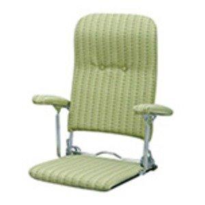 第一ネット 折りたたみ座椅子 3段リクライニング/肘掛け グリーン(緑) 日本製 グリーン(緑) 日本製【完成品】 こたつ椅子にも。モダンでおしゃれな折り畳みフロアチェア, タカネムラ:6f760634 --- profil41.de
