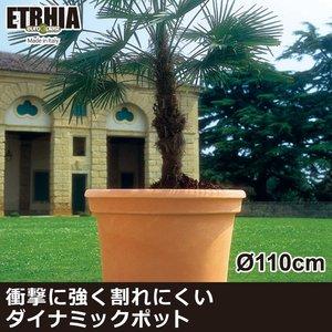 日本初の Euro 3 Plast Etrhia Cillindro 3 ユーロスリープラスト エトリア プランター プランター シリンドロ110 Euro ER-2162 衝撃に強く割れにくいダイナミックポット, シンビモール:4ac3815e --- mikrotik.smkn1talaga.sch.id