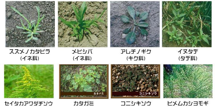 主な対象雑草