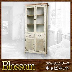 最新のデザイン 収納 棚 キャビネット Blossom ブロッサム【送料無料】(き), 【オンラインショップ】 458bc0d9