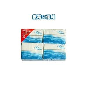100 %品質保証 日清紡 日清紡 水に流せるポケットティッシュ10W(12P) (80パック×1ケース)80パック セット セット u30-679, ciel bleu:03b8425c --- ancestralgrill.eu.org