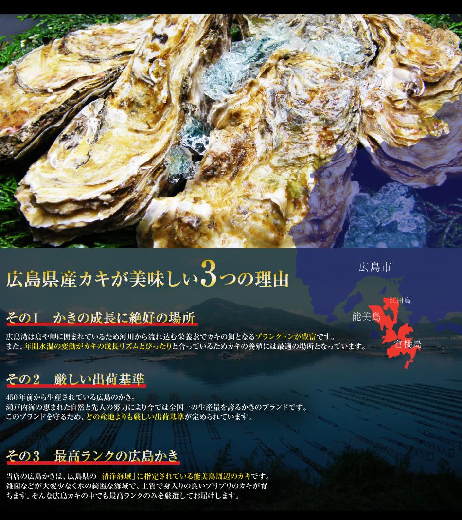広島産ジャンボかき1kg_003