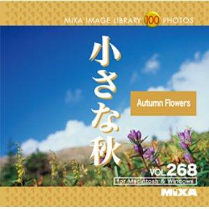 高質 MIXAイメージライブラリーVol.268 小さな秋, 蕎麦蕎麦スイーツ 直心庵 43ba60a8