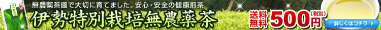 特別栽培無農薬茶送料無料