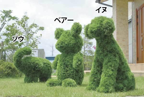 お庭に夢を!動物型のトピアリー