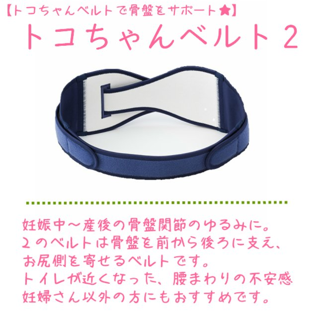 トコ ちゃん ベルト 2