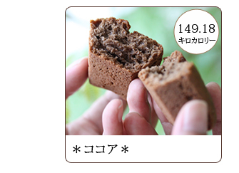 大豆粉で作ったダイエットスイーツケーキ 砂糖不使用のスイーツ。罪悪感なしでスイーツが楽しめます。糖質 食物繊維 健康維持