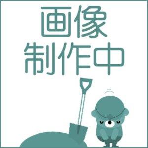 【国内配送】 電動アシスト付き自転車 SANYO 【送料無料】, 化粧品のりぼん:0c82bbdd --- extremeti.com