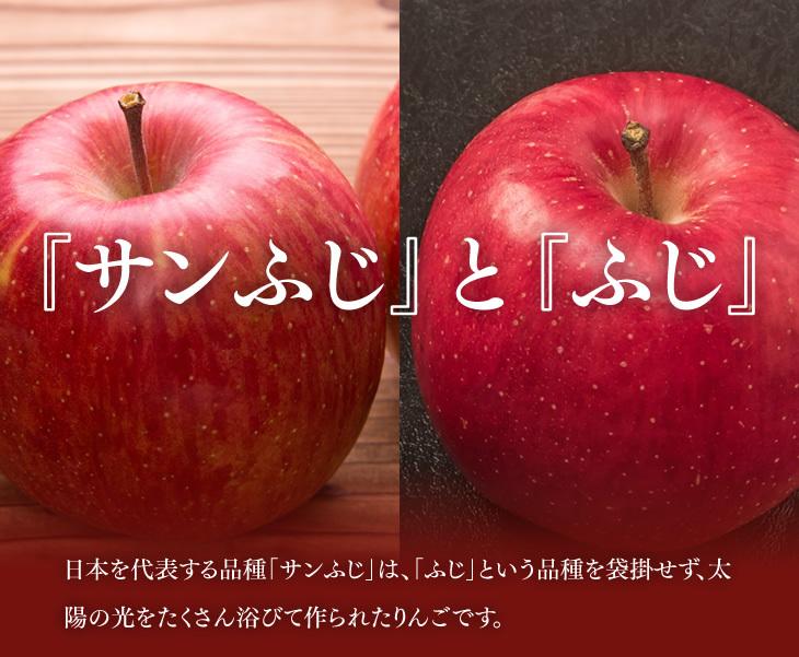 『サンふじ』と『ふじ』 | 日本を代表する品種「サンふじ」は、「ふじ」という品種を袋掛せず、太陽の光をたくさん浴びて作られたりんごです。
