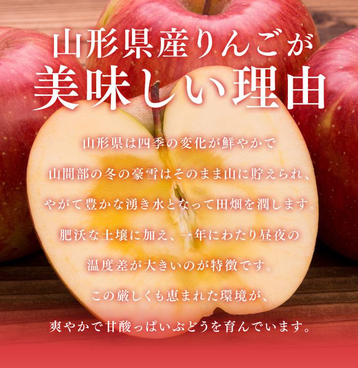 山形県産りんごが美味しい理由 | 山形県は四季の変化が鮮やかで山間部の冬の豪雪はそのまま山に貯えられ、やがて豊かな湧き水となって田畑を潤します。肥沃な土壌に加え、一年にわたり昼夜の温度差が大きいのが特徴です。この厳しくも恵まれた環境が、芳醇な香りの甘いりんごを育んでいます。