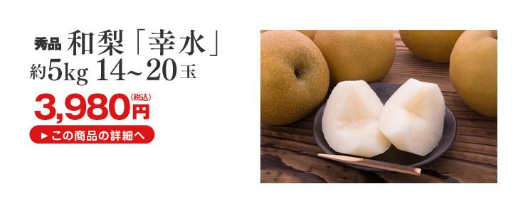 和梨幸水5kg 14~20玉