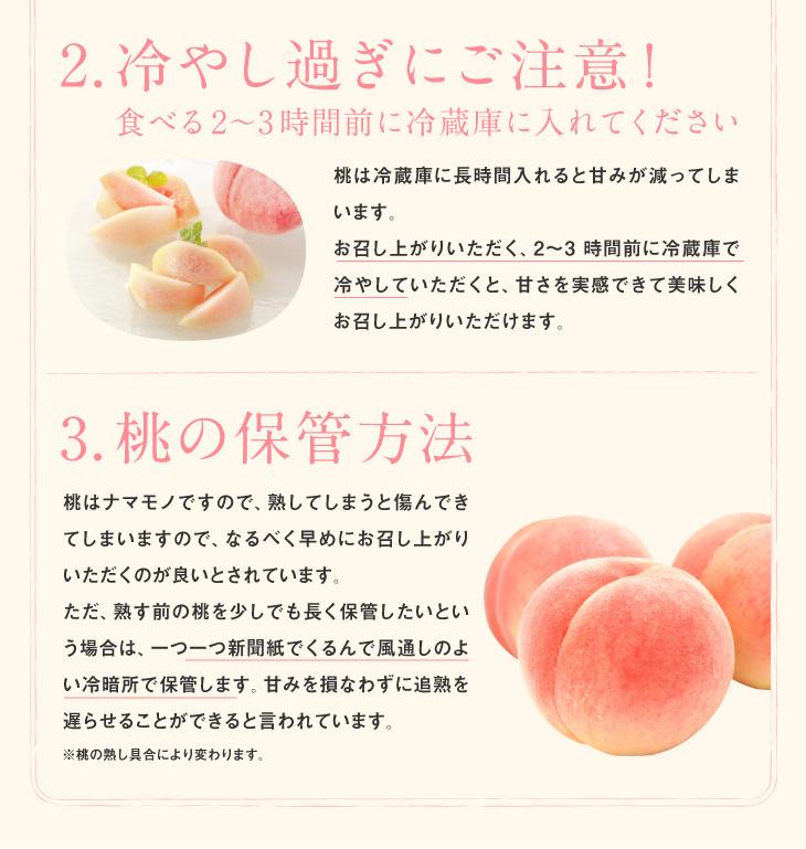 2.冷やし過ぎにご注意!   食べる2~3時間前に冷蔵庫に入れてください 桃は冷蔵庫に長時間入れると甘みが減ってしまいます。お召し上がりいただく、2~3時間前に冷蔵庫で冷やしていただくと、甘さを実感できて美味しくお召し上がりいただけます。   3.桃の保管方法   桃はナマモノですので、熟してしまうと傷んできてしまいますので、なるべく早めにお召し上がりいただくのが良いとされています。ただ、熟す前の桃を少しでも長く保管するしたいという場合は、一つ一つ新聞紙でくるんで風通しのよい冷暗所で保管します。甘みを損なわずに追熟を遅らせることができると言われています。※桃の熟し具合により変わります。